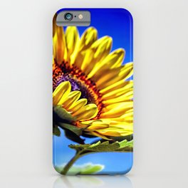 The Sun flower Collection I iPhone Case