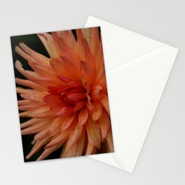 Grown With Love Stationery Cards