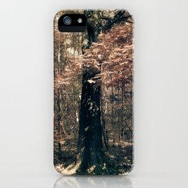 Tales from the trees 1 iPhone Case