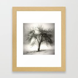 Misty Morning Framed Art Print