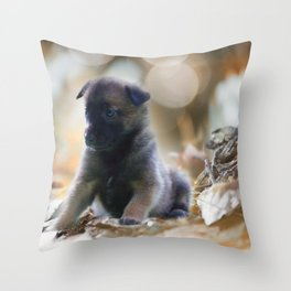 Beautiful puppies in autumn leave Throw Pillow
