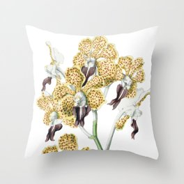 1850 Orchidaceae Throw Pillow