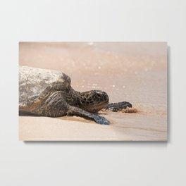 Hawaii- Sea Turtle Metal Print