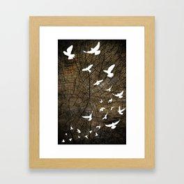 Birds on Wood Framed Art Print