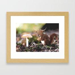 Sqcowirrel Framed Art Print