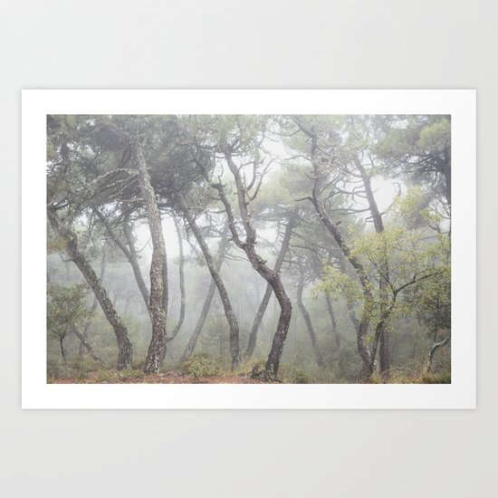 """""""Forest dance"""". Into the foggy woods... Art Print"""