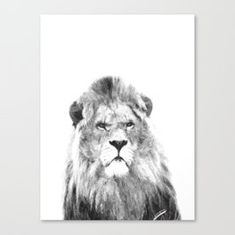 Black and white lion animal portrait Canvas Print