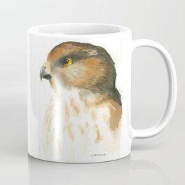 juvenile red-tailed hawk Coffee Mug