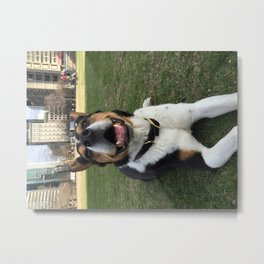 Wallace Smile 2 Metal Print