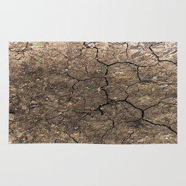 cracked ground Rug
