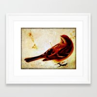 sparrow Framed Art Prints featuring Sparrow by Christine Belanger