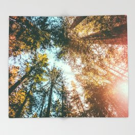 California Redwoods Sun-rays and Sky Throw Blanket