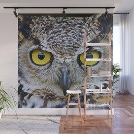 I'm watching you Wall Mural