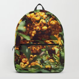 Happy berry II Backpack