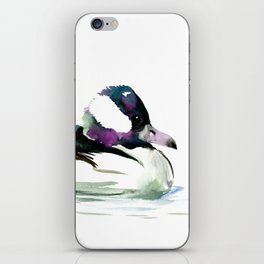 Bufflehead Duck iPhone Skin