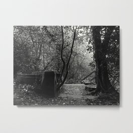 Hidden Away Metal Print