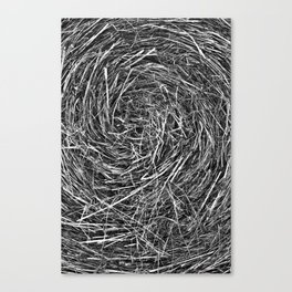 Hay Roll Canvas Print