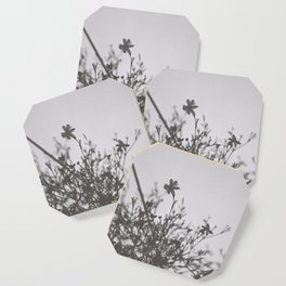 small blooms Coaster