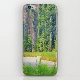 Within the Polder Waters iPhone Skin