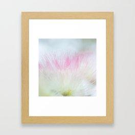 Pink mimosa centered Framed Art Print