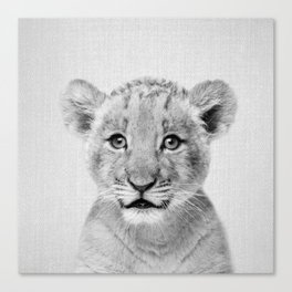 Baby Lion - Black & White Canvas Print