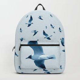 Monochrome - Black Headed Gulls  Backpack