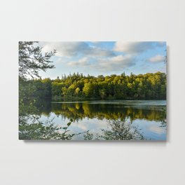 Lake in forrest Metal Print