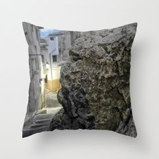 010 Throw Pillow