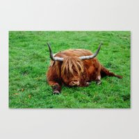 buffalo Canvas Prints featuring buffalo by  Agostino Lo Coco