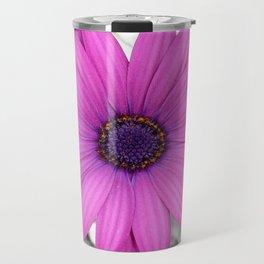 Violet Pink Osteospemum Flower Daisy  Travel Mug
