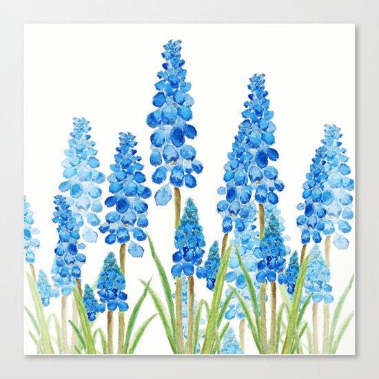 blue grape  hyacinth forest Canvas Print