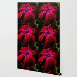 Purple Wild Flower Wallpaper