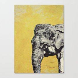 Elephant on yellow Canvas Print
