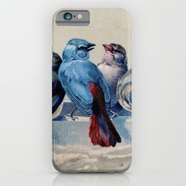 Vintage Blue & Red Winter Songbirds iPhone Case
