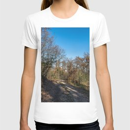Autumnal path through the woods T-shirt