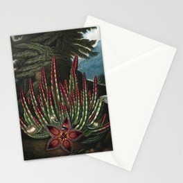 The Maggot-bearing Stapelia - The Temple of Flora Stationery Cards