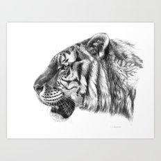 Tiger profile G077 Art Print