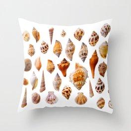 Assorted seashells Throw Pillow