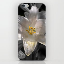 Colourful lily on monochromatic background iPhone Skin