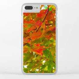 Fall Splash of Color Clear iPhone Case