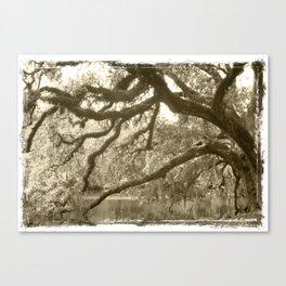 WaterOak Canvas Print