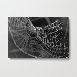 Fragile Beauty Metal Print