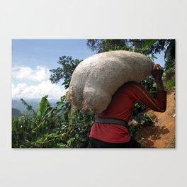 Colombia Coffee Farm Canvas Print