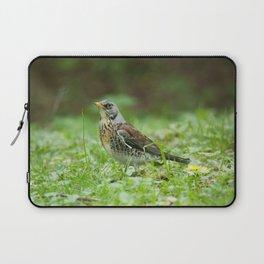 Fieldfare Laptop Sleeve