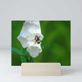 The Bumble Bee Mini Art Print