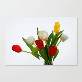 Bunch Of Colorful Tulip Flowers On White Canvas Print