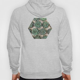 Succulent Collection Hoody