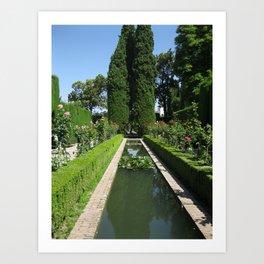Garden and Pond Art Print