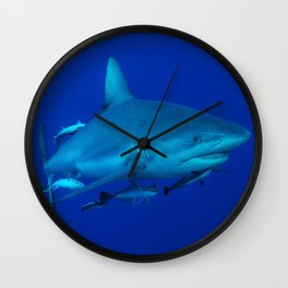 Grey Reef Shark on the Great Barrier Reef Wall Clock