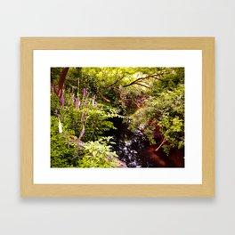Eagle Creek Framed Art Print
